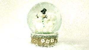 ffslomo-snowglobe-112712-09[1]