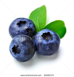 stock-photo-blueberry-92682373